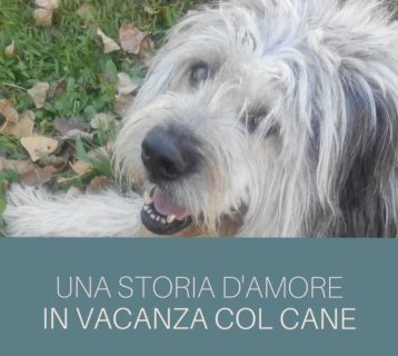 in vacanza col cane